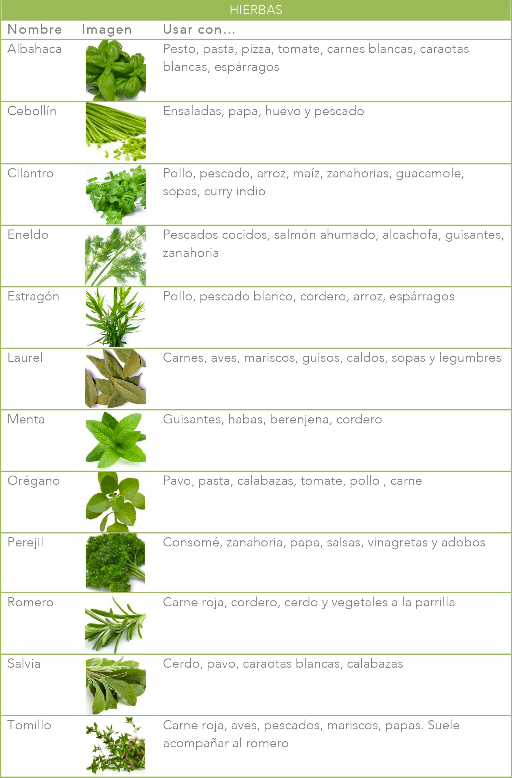 Gu a b sica de hierbas y especias for Plantas aromaticas para cocinar